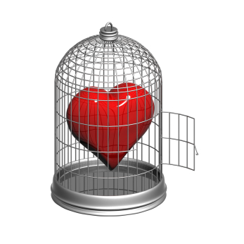 High resolution image of cage with heart inside.
